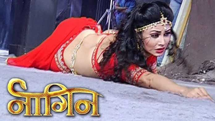 Naagin 22nd May 2016 Today Episode Written Updates