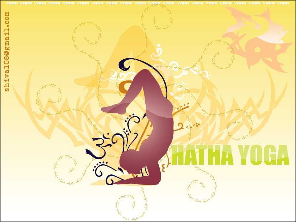 Hatha Yoga Videos and Description