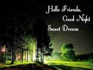 good night dear sweet dreams