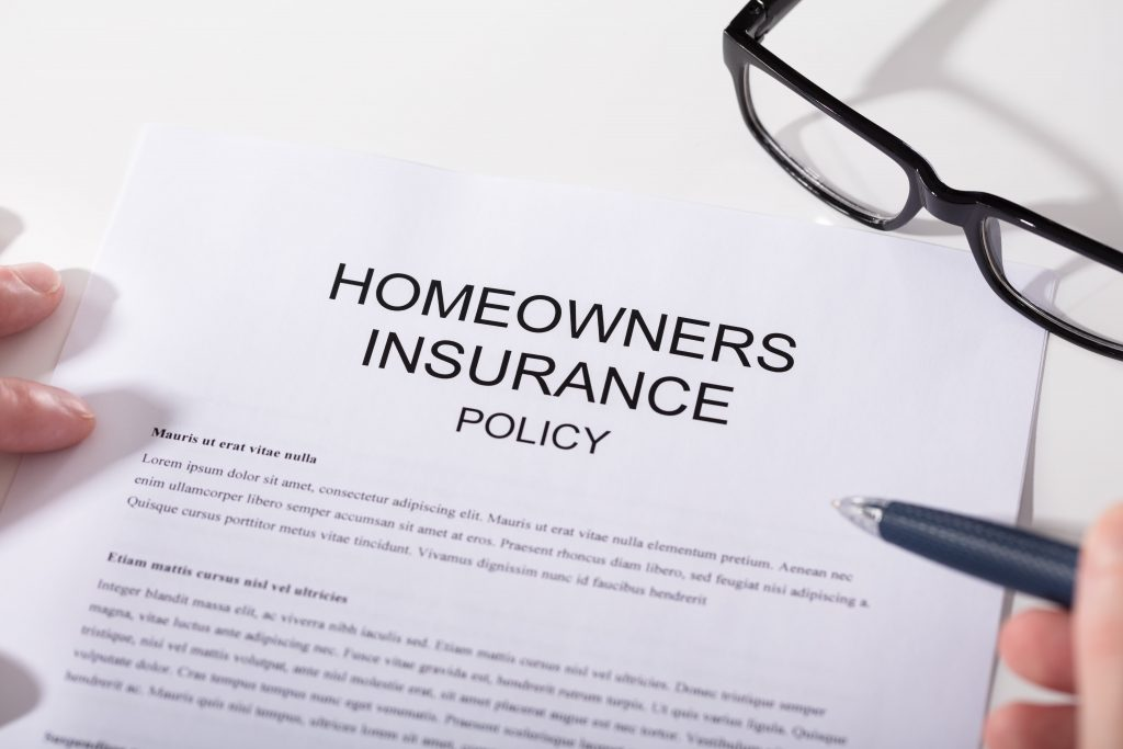 homeowner's insurance policy