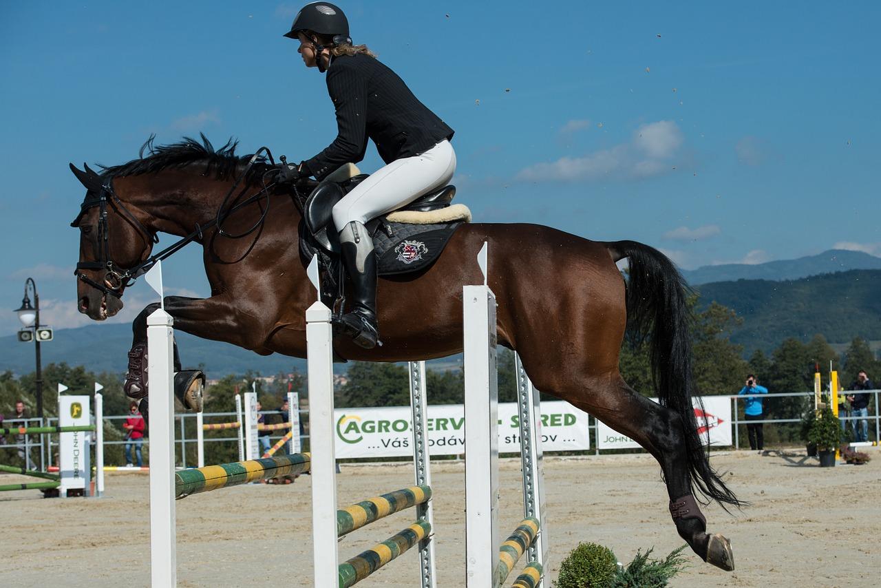 Horse Racing Jumping