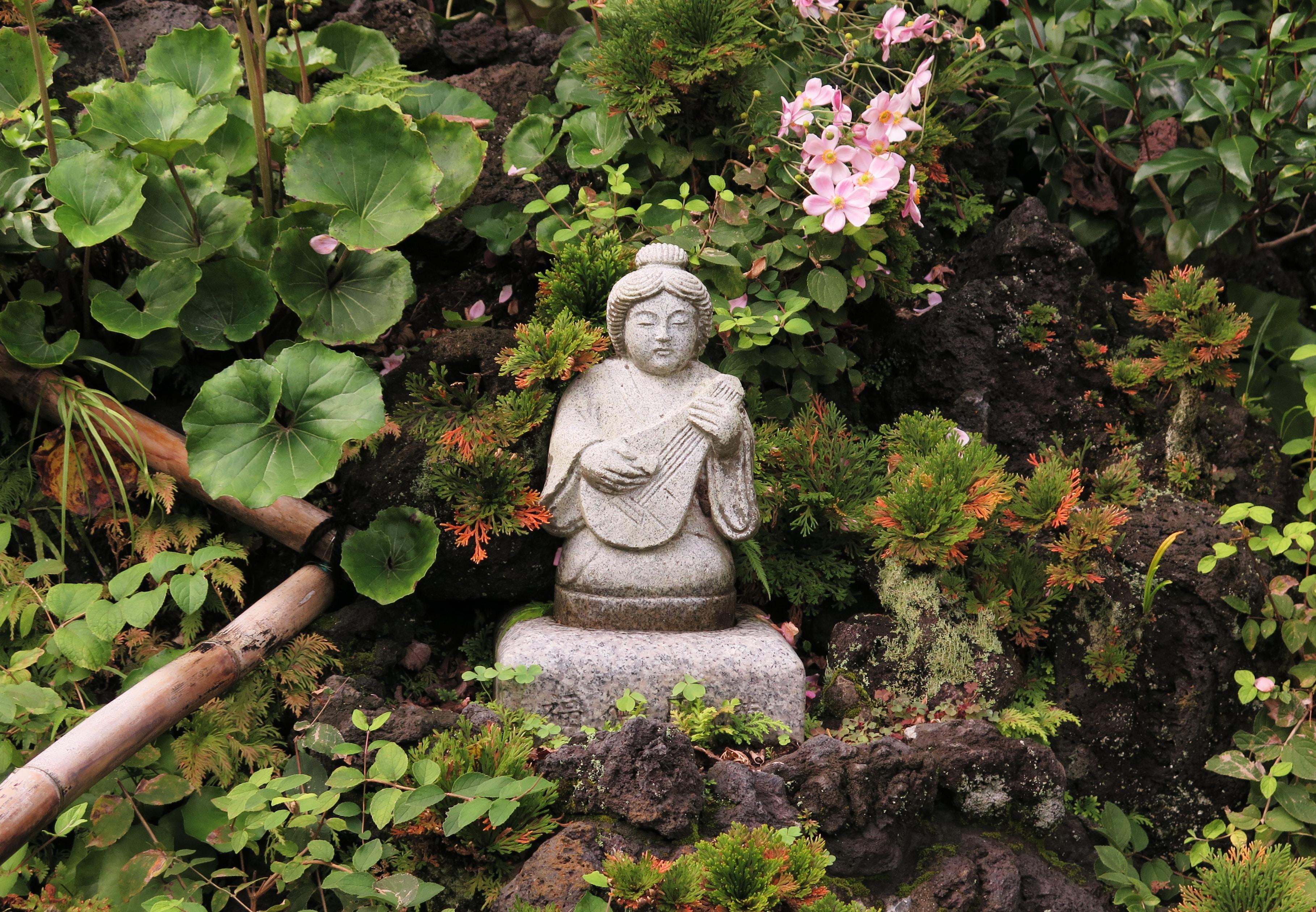 Stress Reducing Zen Oasis