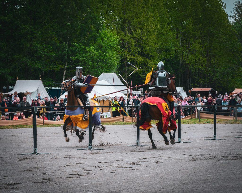 Combat horses