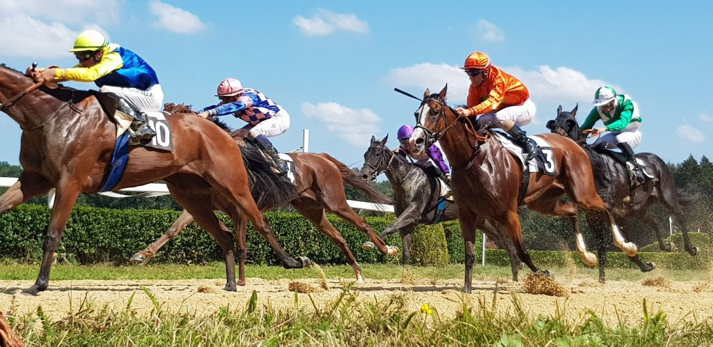 :History of horse racing