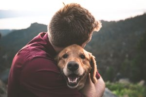 7 Ways Pets Can Help Improve Mental Health